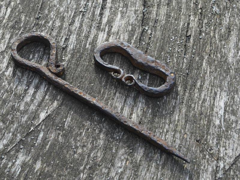 Брянец подарил заповеднику найденную влесу булавку из стального века