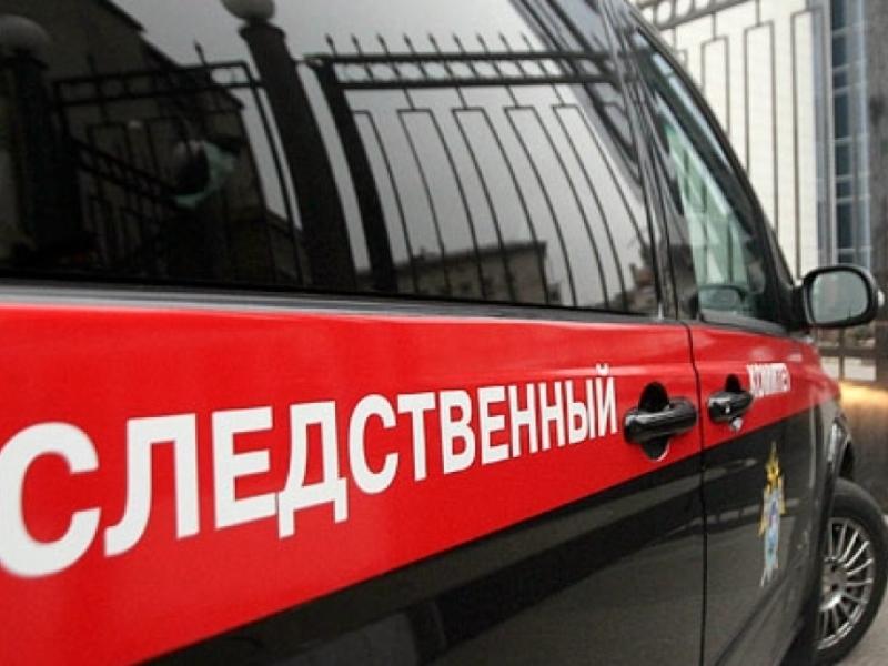 41-летнего жителя Брянска подозревают вубийстве старый матери